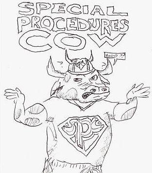 Special Procedures Cow!