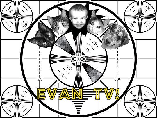 Evan TV!
